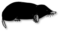 Chasseur de taupes
